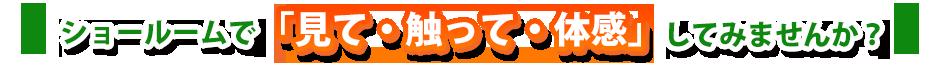 徳島 外壁塗装 防水工事 雨漏り修理 屋根外壁  防水工事  もちろん安心のアフターフォロー付。まずは無料見積を  徳島で唯一の国際資格を持ったプロによる雨漏り診断。 アクリル ウレタン シリコン フッ素 光触媒 遮熱 断熱 塗料 弾性 セラミック 石調 クリアー 水性 油性 吹付け 足場 架け 養生 高圧洗浄 クラック ヒアークラック ひび チョーキング ケレン シーラー プライマー 下塗り 本塗り フィラー 下地 処理 水切り 破風板 軒天 雨樋 霧除け ひさし 庇 雨戸 戸袋 ベランダ FRP 防水 基礎 サイディング モルタル ヘーベル ジョリパット スレート コロニアル 瓦 セメント モニエル ガルバニウム コーキング シーリング サンダー DIY 日本ペイント ハナコレクション サーモアイ ガイナ アステック
