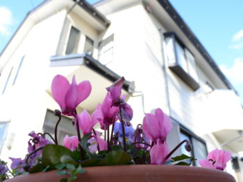 徳島県 板野郡 北島町 屋根塗装 外壁塗装 株式会社中山コーティング 花