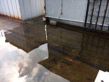徳島市 屋上ドレン穴の詰まりで、水が排出しなく水たまりになっている
