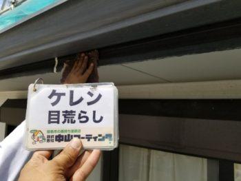 ダイフレックス ダイヤカレイド 徳島