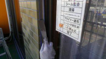 鳴門市 雨漏り修繕工事 オカトヨ釣り具店様