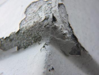 中山コーティング 外壁張り替え カバー工法 徳島