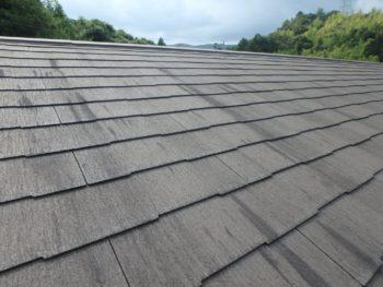 徳島 塗装 中山コーティング 塗り替え  屋根