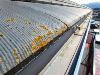 屋根塗装 徳島市 モニエル瓦