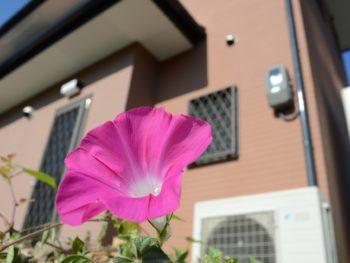 徳島 住宅塗装 中山コーティング