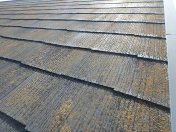 屋根 劣化 苔 施工前 徳島県