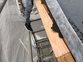 屋根 野地板 交換 徳島県