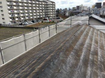 屋根 シート 劣化 徳島県