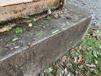 土台 苔 汚れ 徳島県 施工前