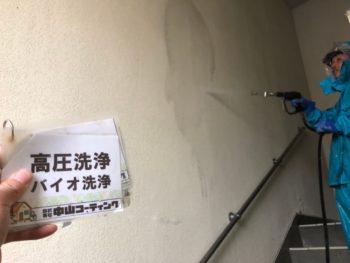 徳島県 徳島市 階段 壁面 洗浄