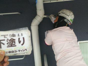 雨樋 塗装 徳島県
