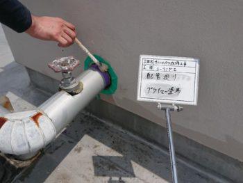 マンション 排管 プライマー 徳島県