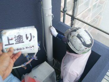 徳島県 雨樋 塗装