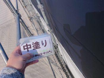 塗装 鉢巻 徳島 八万