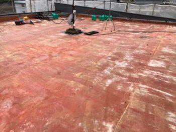 徳島県 阿南市 屋上防水 防水シート 除去