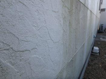 徳島県 小松島市 施工前 外壁 苔