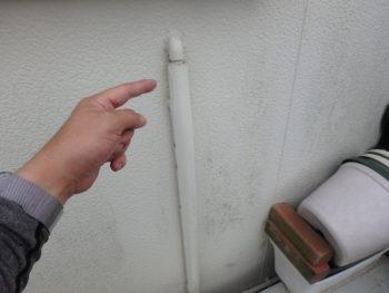 徳島県 藍住町 施工前 外壁 苔 汚れ
