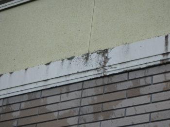 徳島県 上板町 施工前 帯 黒ずみ