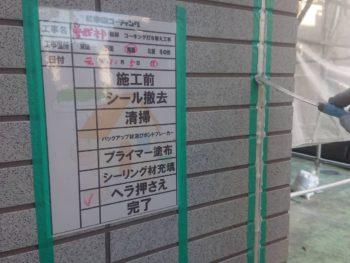 徳島県 北沖洲 コーキング ヘラ