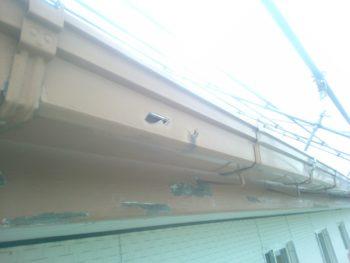 徳島県 阿南市 教会 洗浄 雨樋