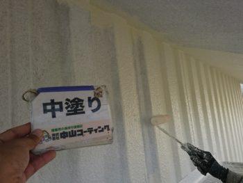 徳島 城南 外壁 塗装 外観