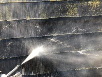 徳島県 板野郡 洗浄 屋根 苔