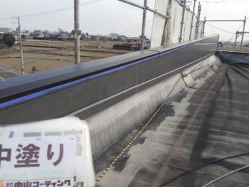 徳島県 阿南市 長生町 外壁塗装 屋上 中塗り