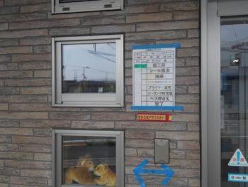 徳島県 城東町 病院 コーキング 施工前