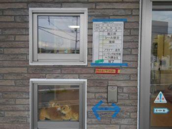 徳島県 城東町 病院 コーキング 施工後