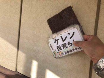 徳島県 羽ノ浦町 外壁塗装 ケレン