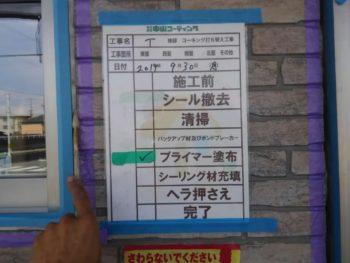 徳島県 城東町 病院 コーキング プライマー