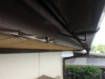 徳島県 板野郡 北島町 施工前 破風 鼻隠し