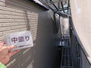 徳島県 徳島市 安宅 外壁 塗装 中塗り