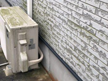 美馬市 外壁塗装 コケ 洗浄